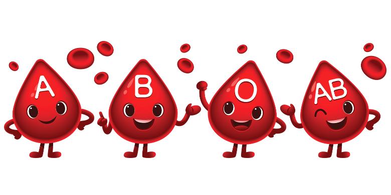 טיפות דם מחזור הדם והשמחה